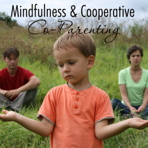 mindfulness-cooperative co-parenting